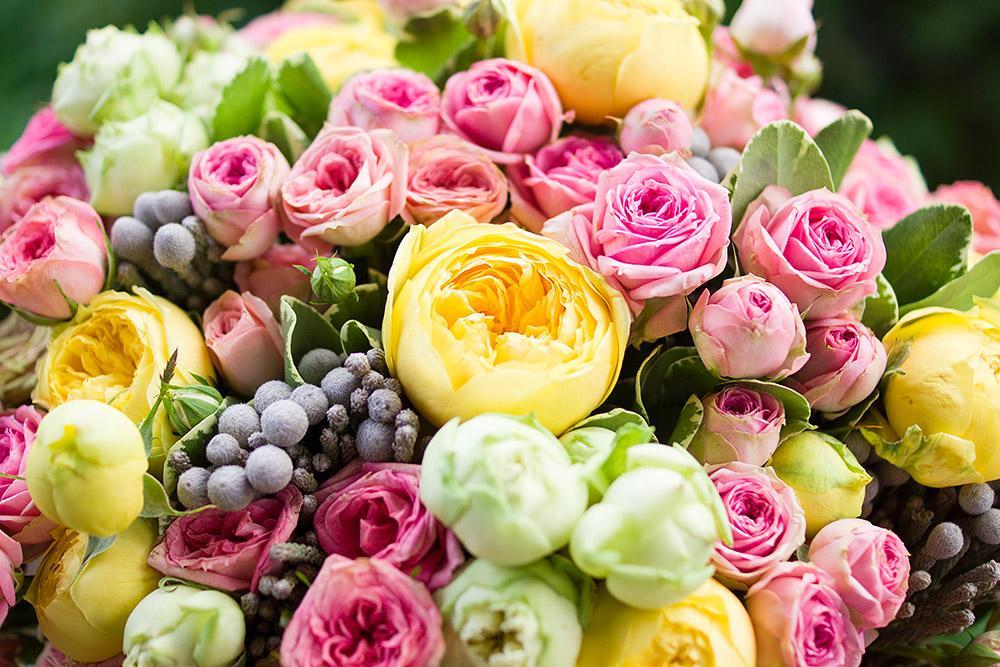 Пионовидные розы для открытки 452