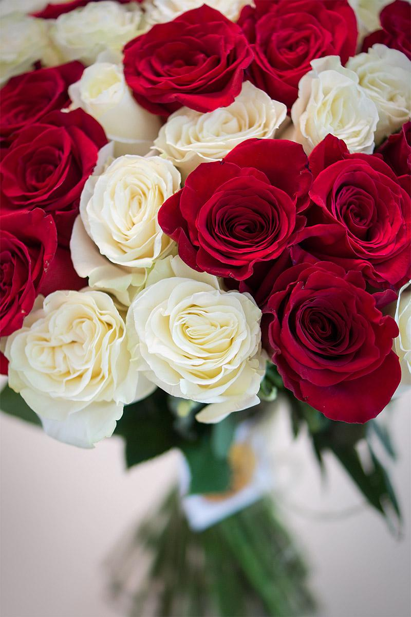 Цветов, букет алых и белых роз