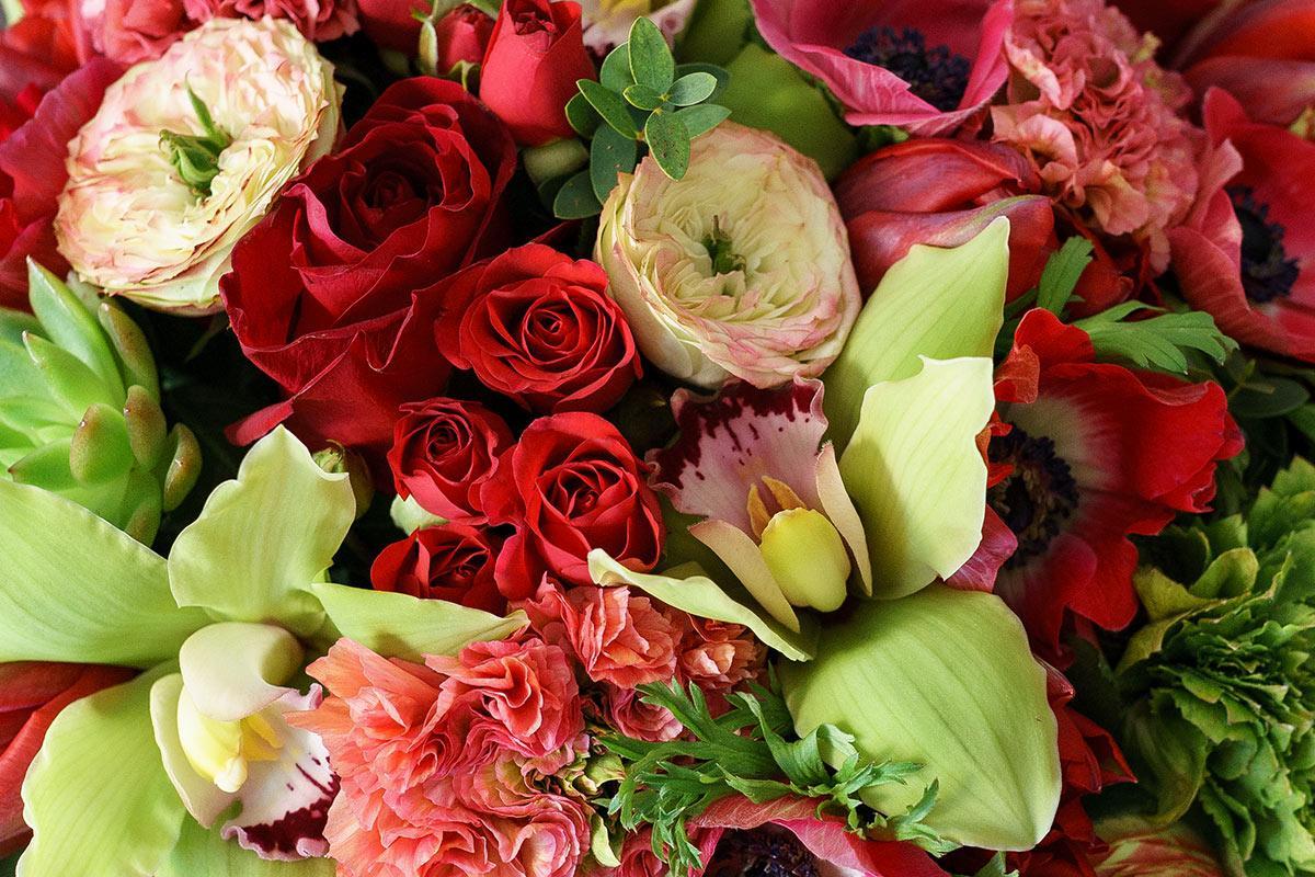 сделали тюльпаны розы орхидеи фото горшок почвой