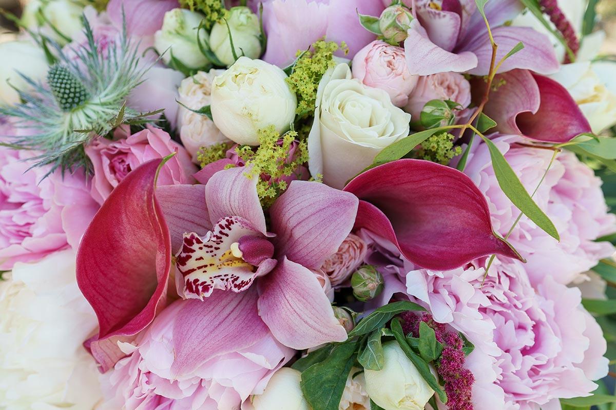 Чистоте, открытки с днем рождения пионы и лилии