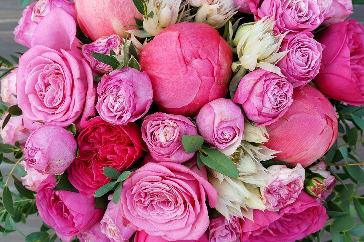 букет фото пион роза имбиря очистить