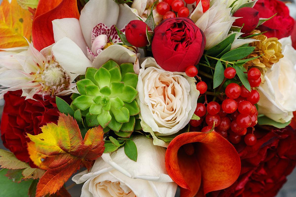 Открытки с розами осенью